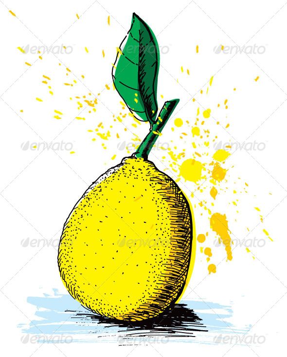 GraphicRiver Lemon Drawing 5318092