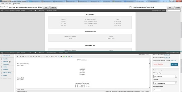 CodeCanyon Wordpress Editor 5309641