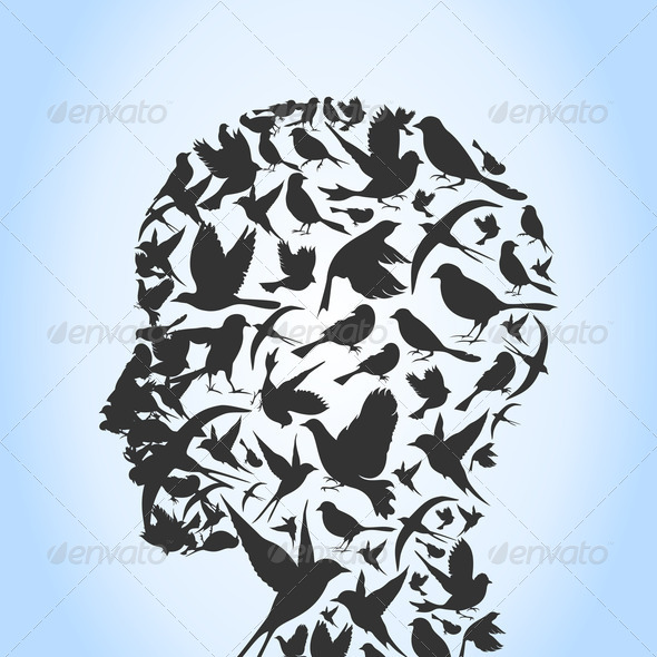 Bird a head - Stock Photo - Images