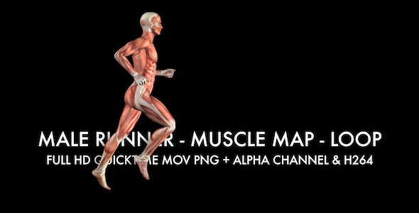 Muscle Map Male Runner Loop