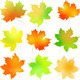 Vector Set Autumn Maple Leaf - GraphicRiver Item for Sale