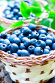 Blueberries closeup