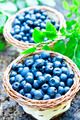 Blueberries basket closeup