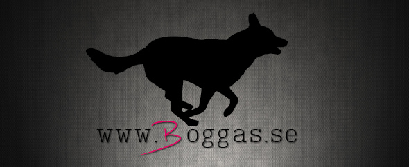 Boggas