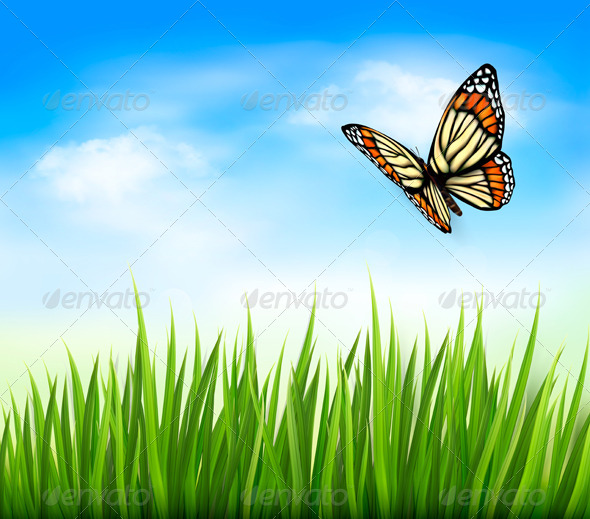 Nature Background with Green Grass and Butterfly