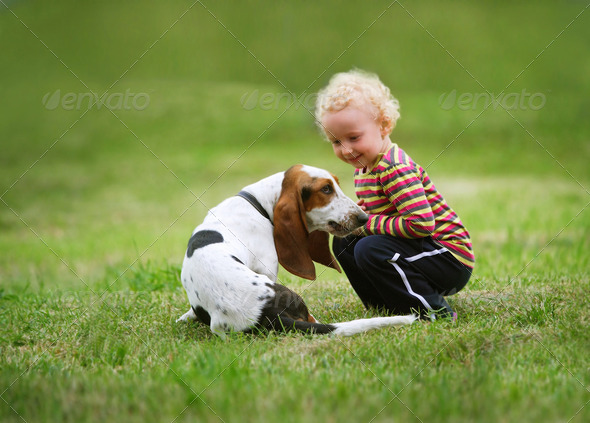 Little girl playing with a dog - Stock Photo - Images