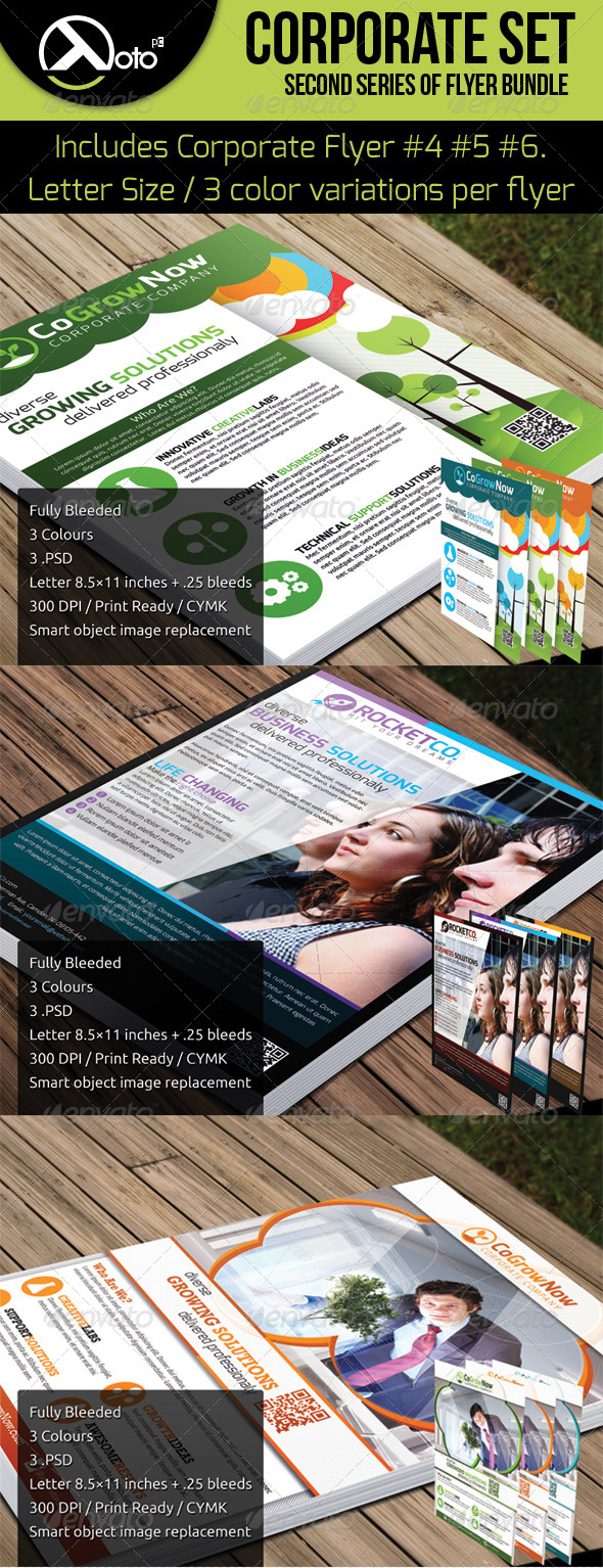 GraphicRiver Corporate Flyer Set 2 5343451