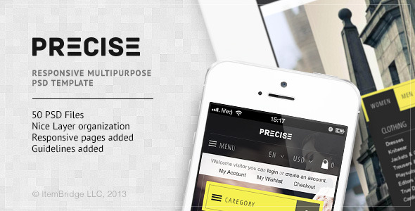 Precise — Multipurpose PSD Template