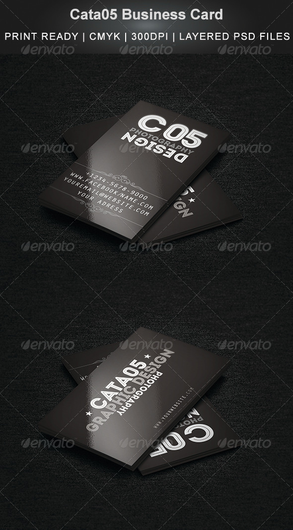 GraphicRiver Cata05 Business Card 5290671