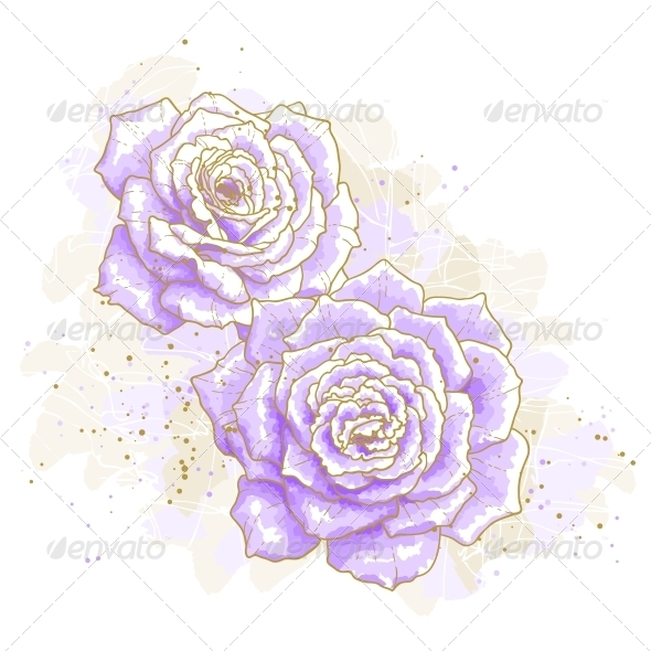 GraphicRiver Violet Roses on White Background 5355005