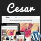 Cesar Responsive Portfolio Photography Theme