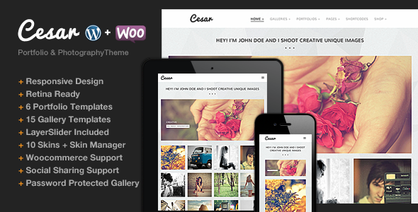 ThemeForest Cesar Responsive Portfolio Photography Theme 5362099