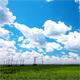 Green Field And Cloudy Sky - VideoHive Item for Sale