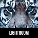 Premium Photo Presets Volume 1 - GraphicRiver Item for Sale