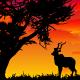 African Landscape Kit - GraphicRiver Item for Sale