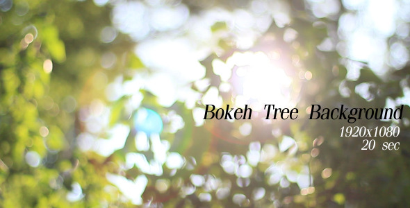 Bokeh Tree Background 3