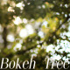 Bokeh Tree Background 4 - VideoHive Item for Sale