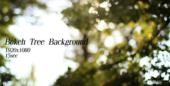 Bokeh Tree Background 4
