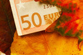Fifty euro banknote between autumn leaves - PhotoDune Item for Sale