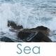 Morning coastline No. 2 - VideoHive Item for Sale