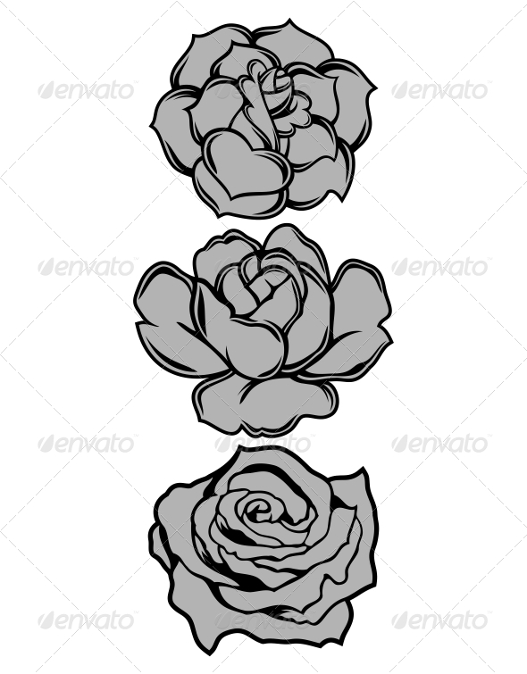 GraphicRiver Roses Vector 5383165