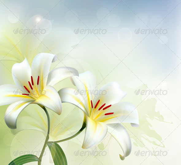 GraphicRiver Holiday Background with Two White Lilies 5386051