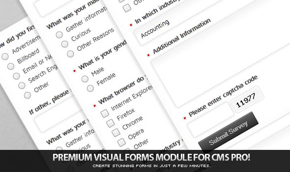 CodeCanyon Visual Forms Module for CMS pro 554541