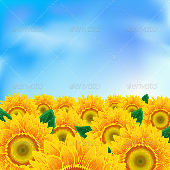 GraphicRiver Background with sunflower 554863