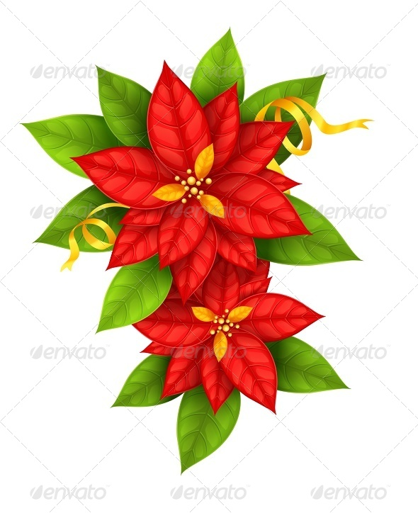 GraphicRiver Christmas Star Flowers Poinsettia with Gold Ribbon 5404200