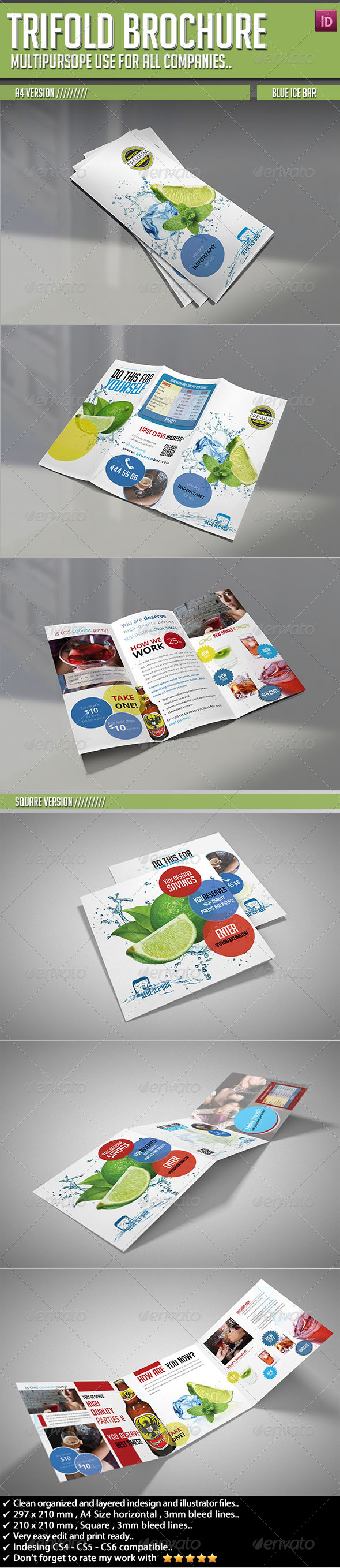Trifold Brochure Blue Ice Bar