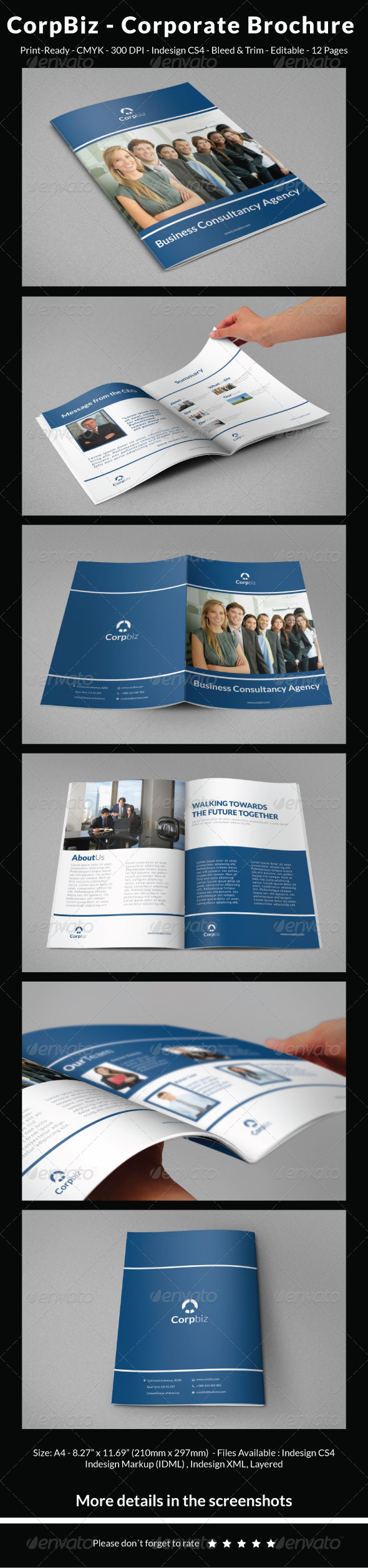 GraphicRiver CorpBiz Corporate Brochure 5309510