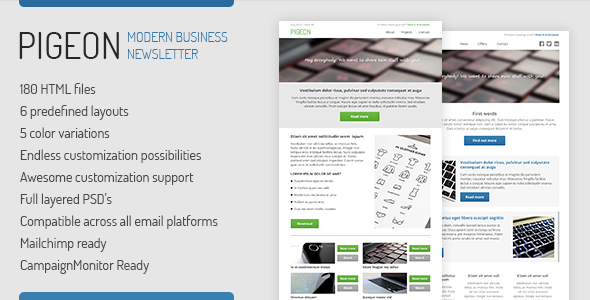 ThemeForest PIGEON Business Email Template 5410732
