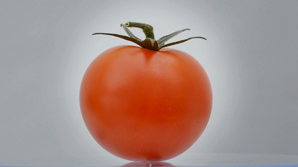 Tomatoe Cherry Rotating