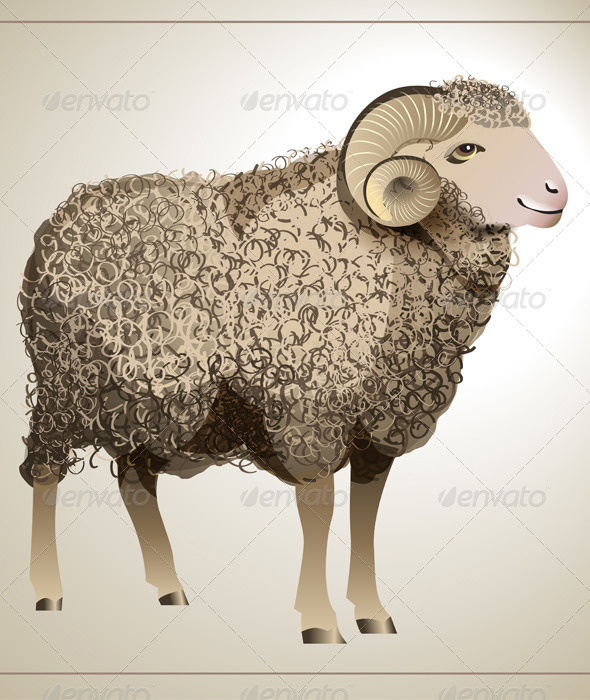 GraphicRiver Vector Realistic Sheep 5420329