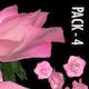 Sparking Arabesque - Full HD Loop - Pack 2 - 100