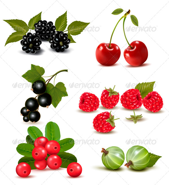 GraphicRiver Big Group of Fresh Berries and Cherries 5430551