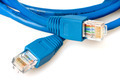 Blue network cable with jack