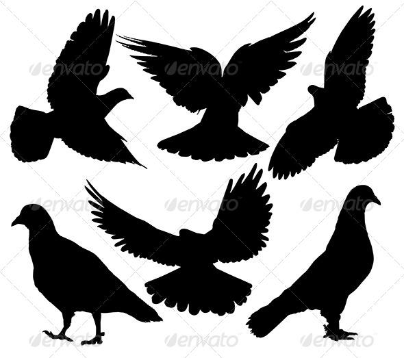 GraphicRiver Pigeon Silhouette 5432088