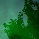 Green_soul_by_vlastas