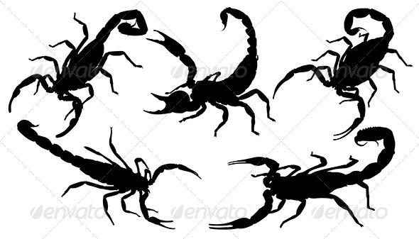GraphicRiver Scorpion Silhouette 5434994