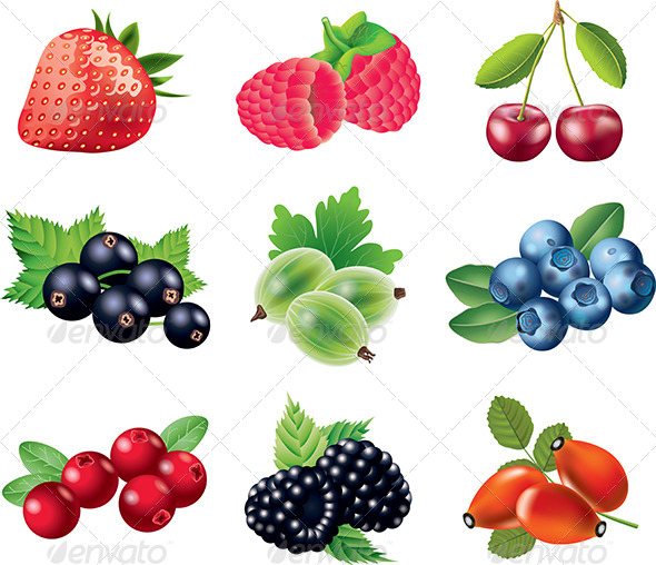 GraphicRiver Popular Berries Vector Set 5435098