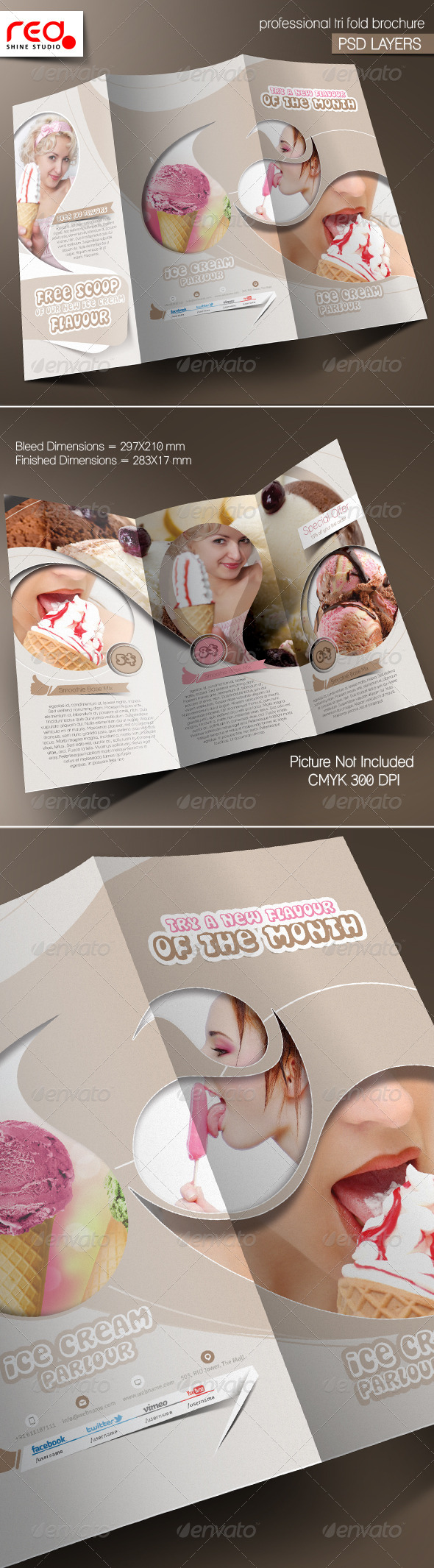 GraphicRiver Ice cream Shop Trifold Brochure Template 5442523