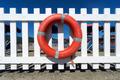 lifebuoy on wooden fence