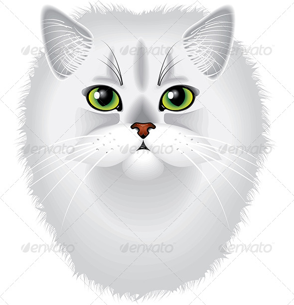 GraphicRiver Persian Cat Portrait Detailed Vector 5453744