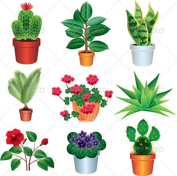 GraphicRiver Home Plants Vector Set 5454287