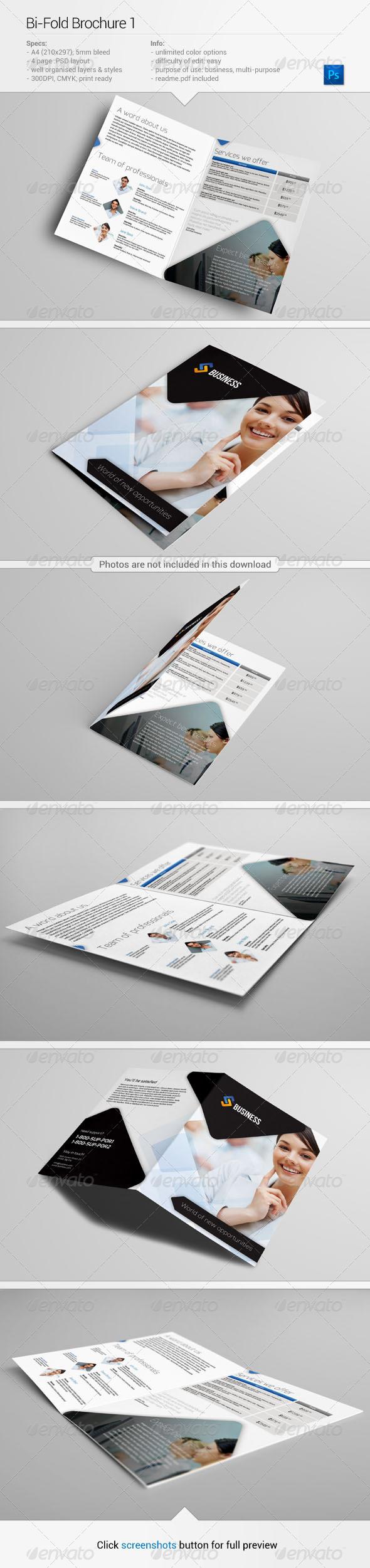 Bi-fold Brochure 1