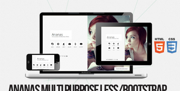 ThemeForest Ananas Multi purpose LESS Bootstrap Theme 5272945