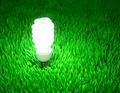 Energy saving light bulb - PhotoDune Item for Sale