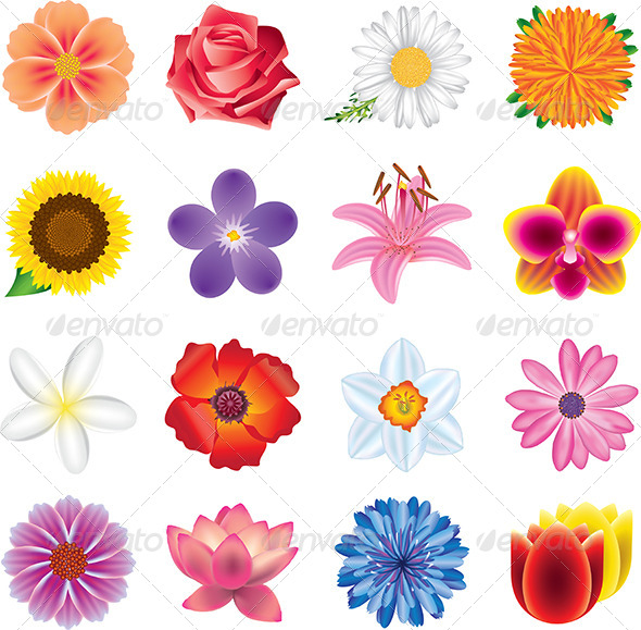 GraphicRiver Colorful Flowers Vector Set 5453988