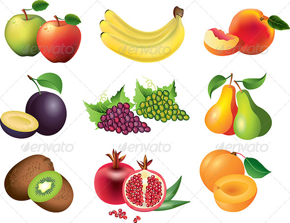 Popular Fruits Vector Set
